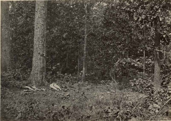 George N. Barnard, Scene of General McPherson's Death, Photographic Views of Sherman's Campaign, 1866. Collection of the MFA Houston.