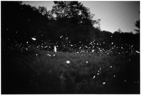 "Gregory Crewdson, Untitled (13-35), from the ""Fireflies"" series, 1996/2006."