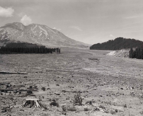 Frank Gohlke, Looking NW across Lahar at Mount St. Helens, 6 miles SE of Mount St. Helens, Washington, 1984. Collection of the Smithsonian American Art Museum, Washington.