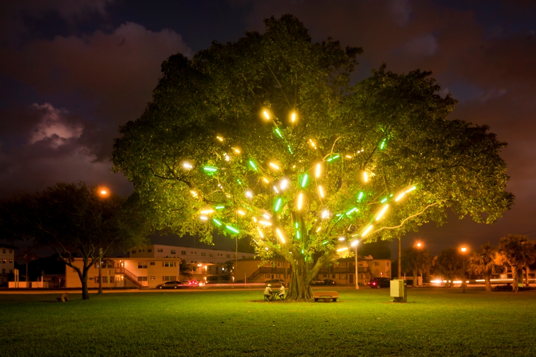 Mark Handforth, Electric Tree, 1998-2011.