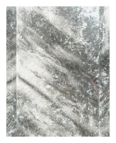 Luisa Lambri, Untitled (Sheats-Goldstein House#07), 2007.