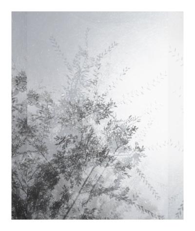 Luisa Lambri, Untitled (Sheats-Goldstein House#14), 2007.