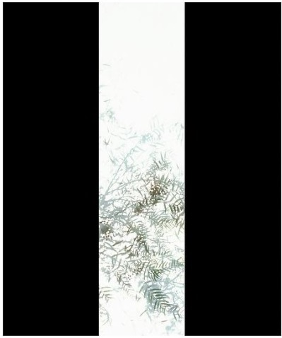 Luisa Lambri, Untitled (Schindler House, #01), 2007.