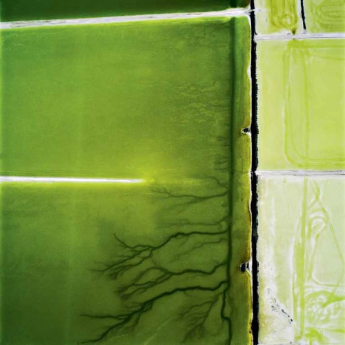 David Maisel, Terminal Mirage 19, 2003.