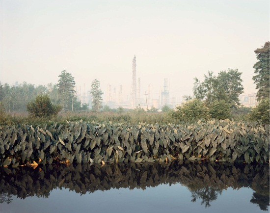 Richard Misrach, Roadside Vegetation and Orion Refining Corporation, Good Hope, Louisiana, 1998.
