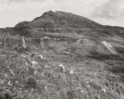 Robert Adams, Clear-cut and Burned, East of Arch Cape, Oregon, 1976. Collection of the Museum of Modern Art, New York.