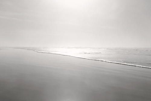 "Robert Adams, Nehalem Spit, Tillamook County, Oregon, from the series ""Sea Stories, This Day,"" 1999-2009."