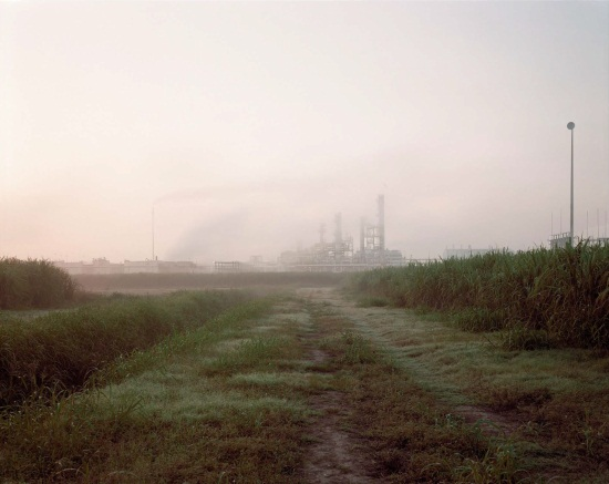 Richard Misrach, Sugar Cane and Refinery, Mississippi River Corridor, 1998.