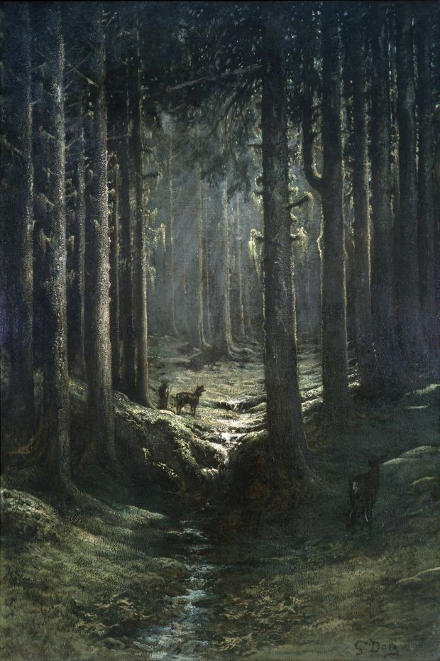 Gustave Dore, Deer in a Pine Forest (Vosges), ca. 1865. Collection of the Carnegie Museum of Art, Pittsburgh.