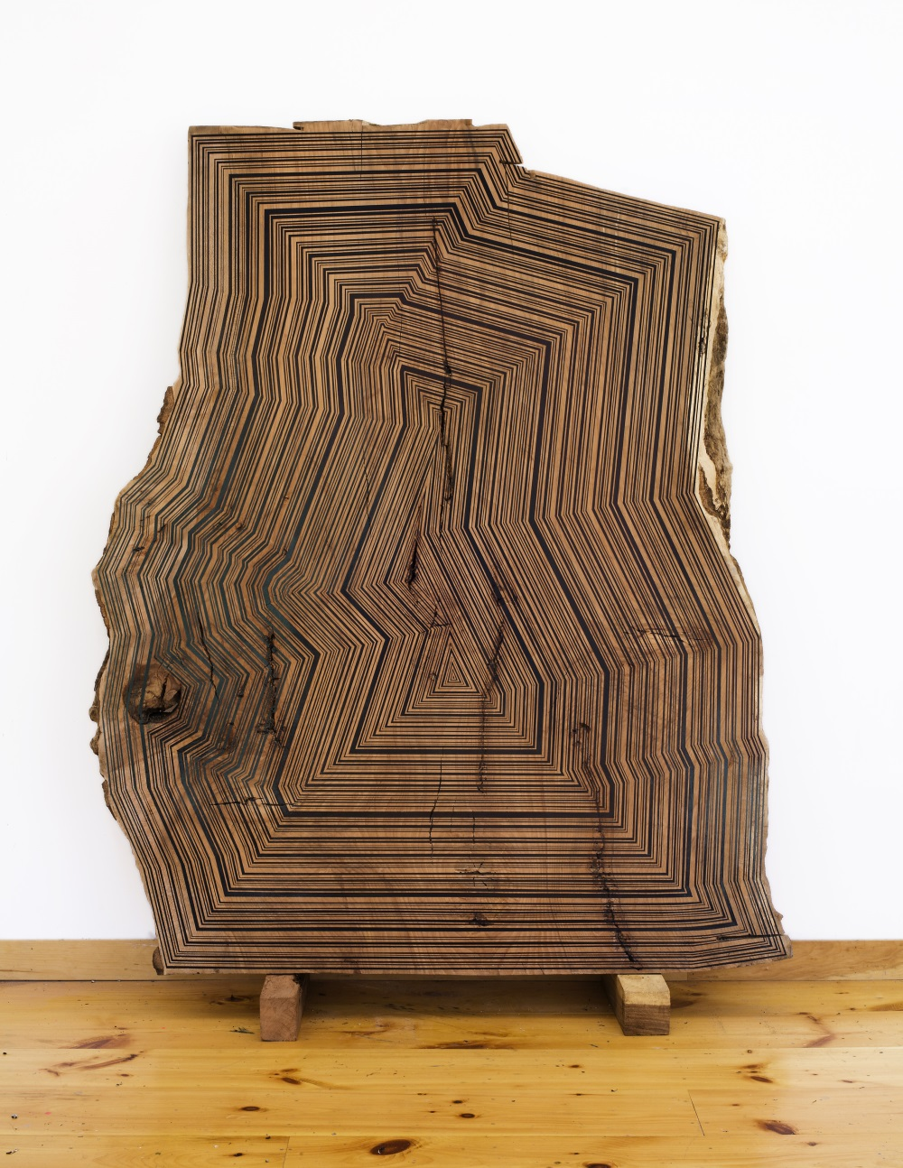 Jason Middlebrook, Once Again a Version of Nature Through My Eyes, 2011.