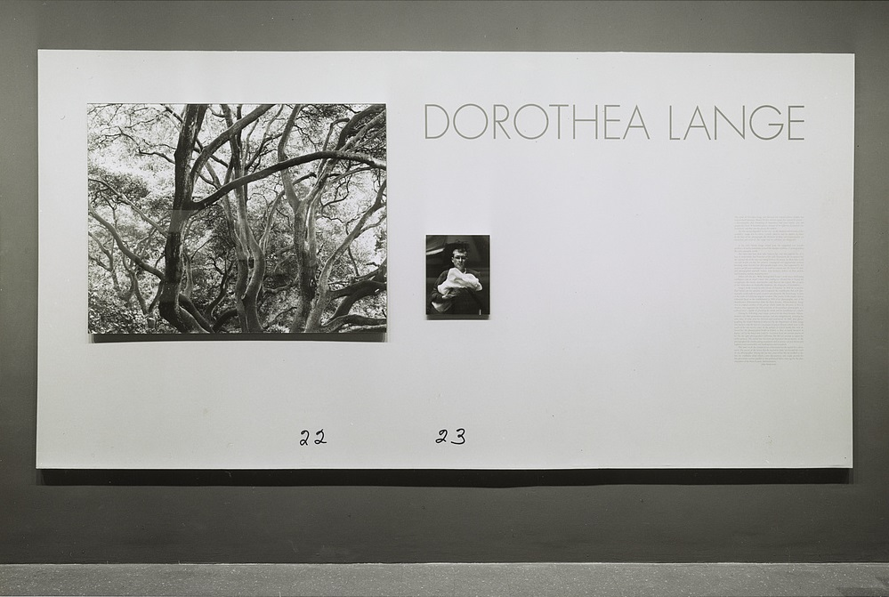 Installation view of the 1966 Dorothea Lange retrospective at the Museum of Modern Art, New York.