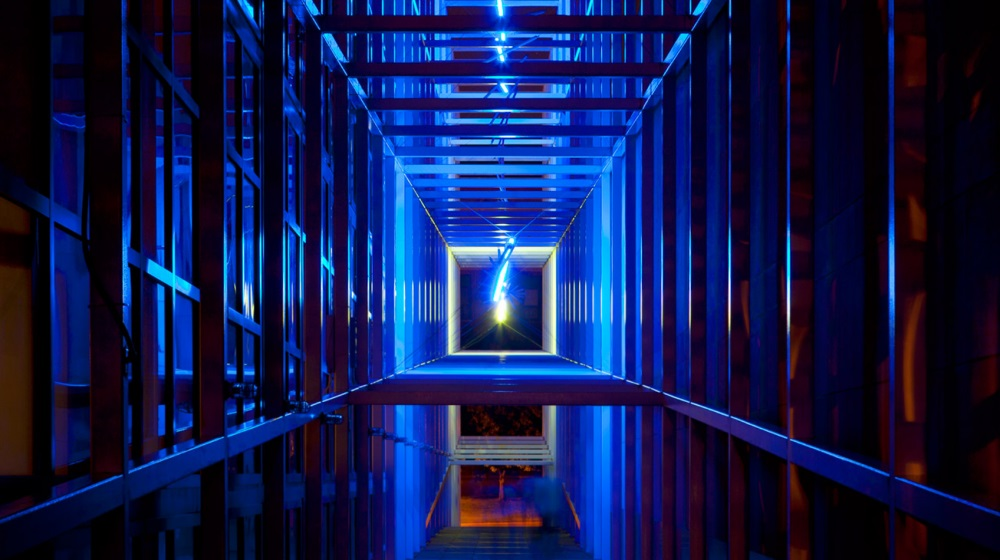 Erwin Redl, Fetch, 2010.