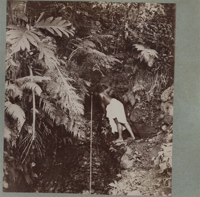 Anonymous, Rock Spring in the Samoan Islands, by 1887. Collection of the Mitchell Library at the State Library of New South Wales.