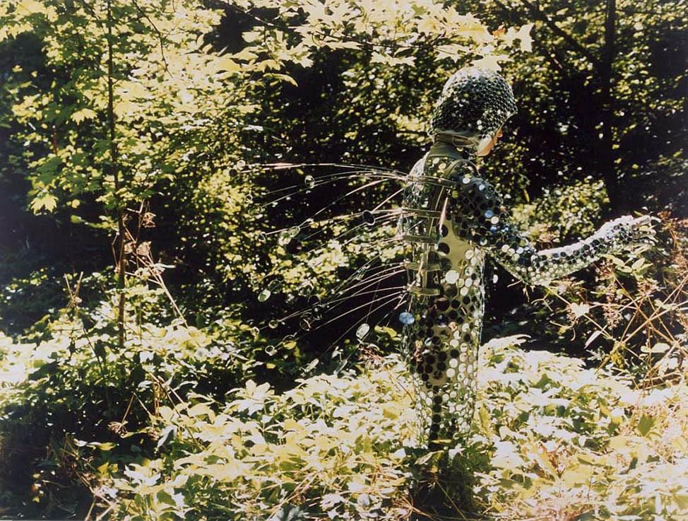 Alyson Shotz, Reflective Mimicry, 1997.