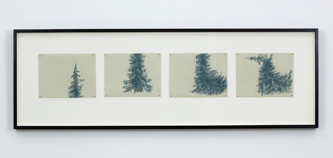 Eija-Liisa Athila, Anthropomorphic Exercises (On Film), Series A: Aspect Ratio / Kneeling Spruce, 2011.