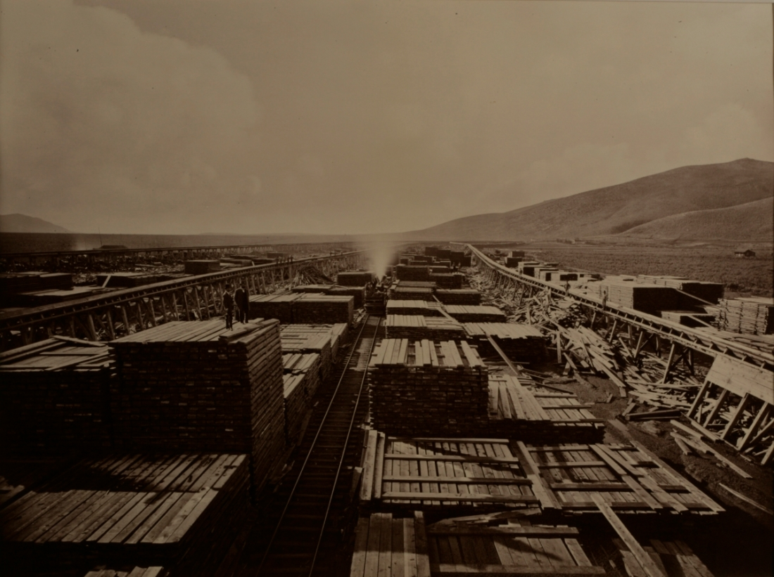 Carleton Watkins, Carson and Tahoe Lumber and Fluming Company, South of Carson City, 1876.