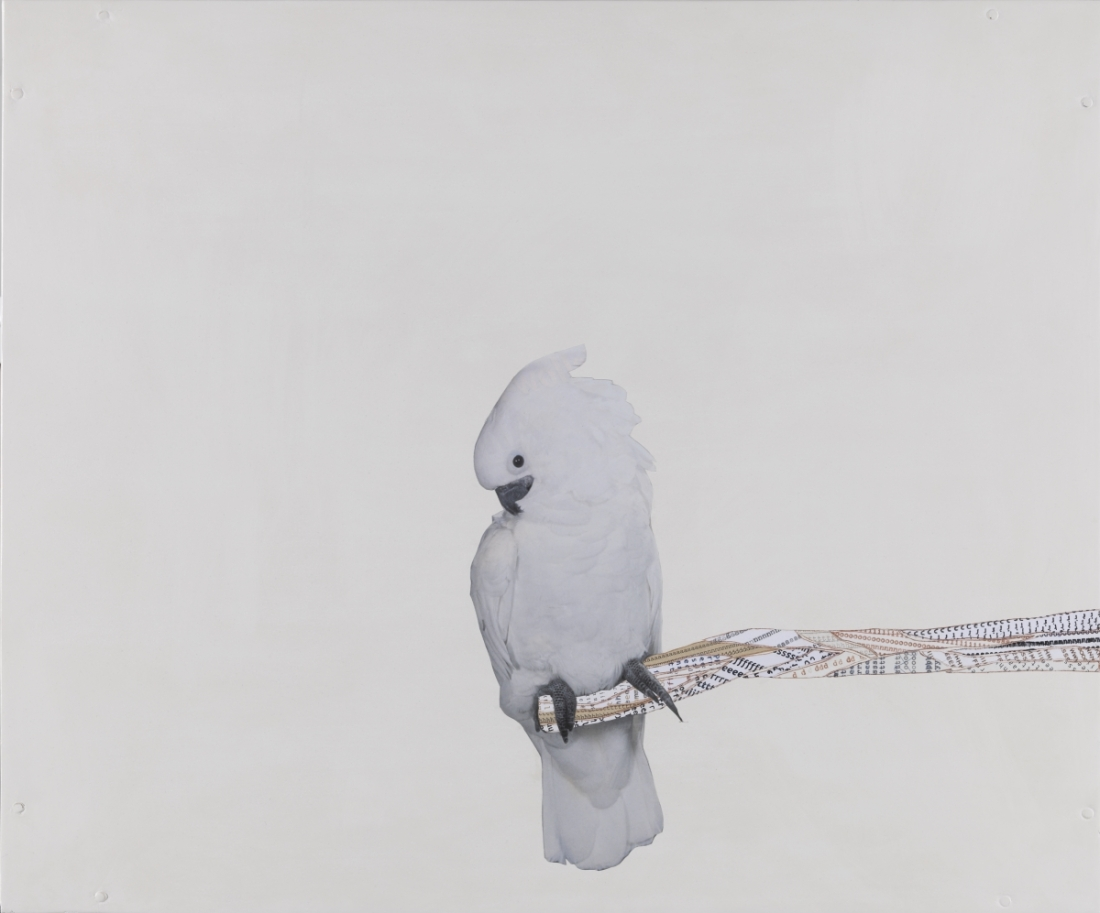 Frances Stark, Portrait of the Artist as a Full-on Bird, 2007-08.
