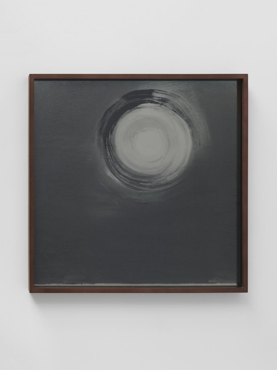 Lisa Oppenheim, Lunagrams (Ann Craven) 08, 2015.