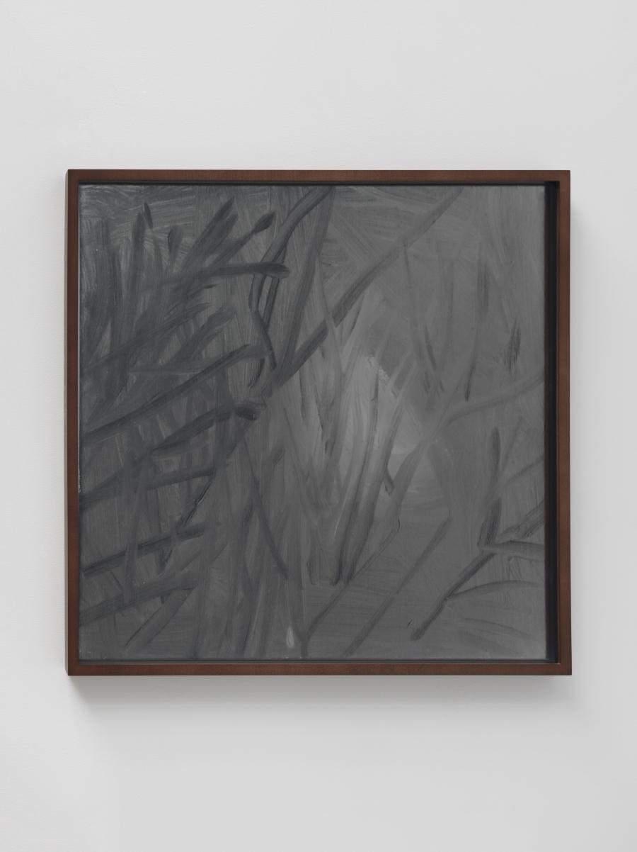 Lisa Oppenheim, Lunagrams (Ann Craven) 10, 2015.