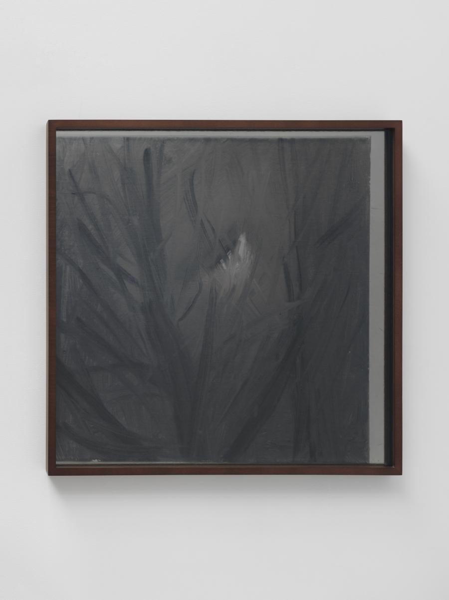 Lisa Oppenheim, Lunagrams (Ann Craven) 11, 2015.