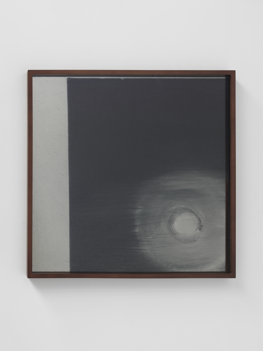 Lisa Oppenheim, Lunagrams (Ann Craven) 17, 2015.