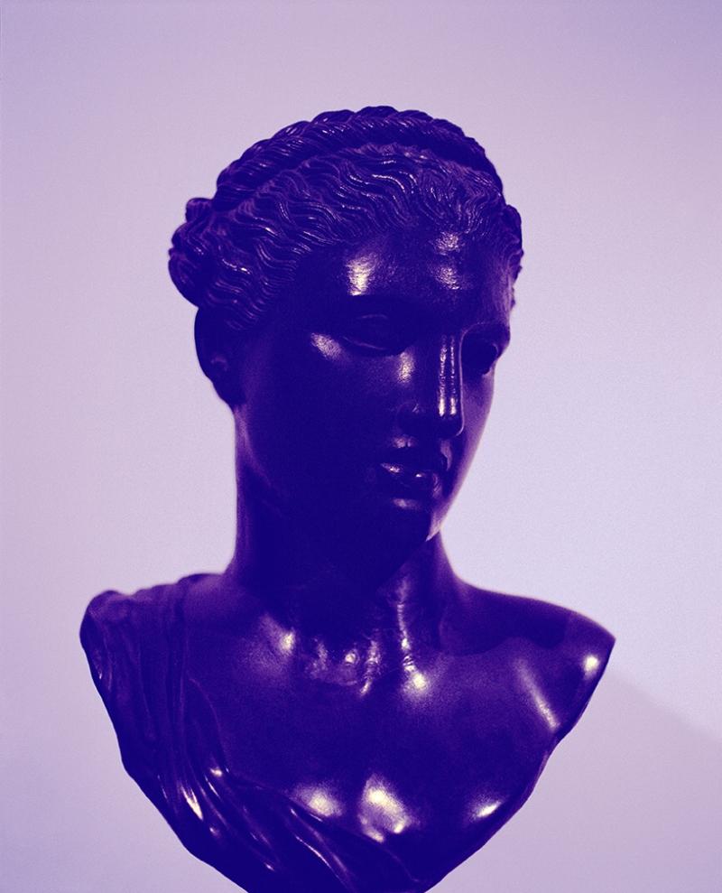 Sara VanDerBeek, Roman Woman VIII, 2013.