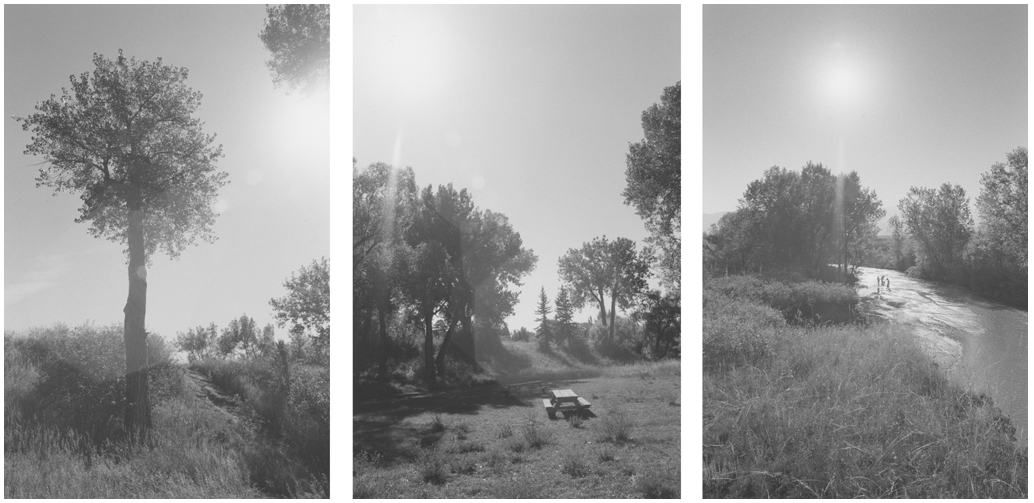 Robert Adams, Untitled from Listening to the River, 1994.