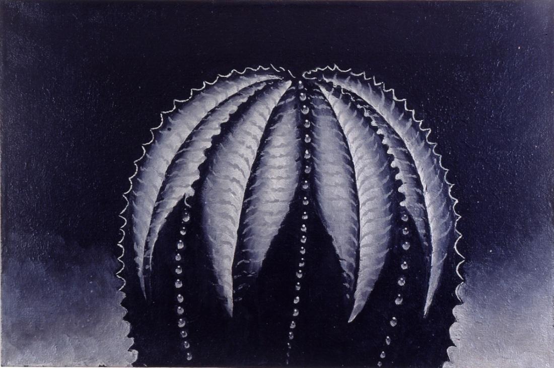 Martin Wong, Euphorbia Obesa, 1997-98.