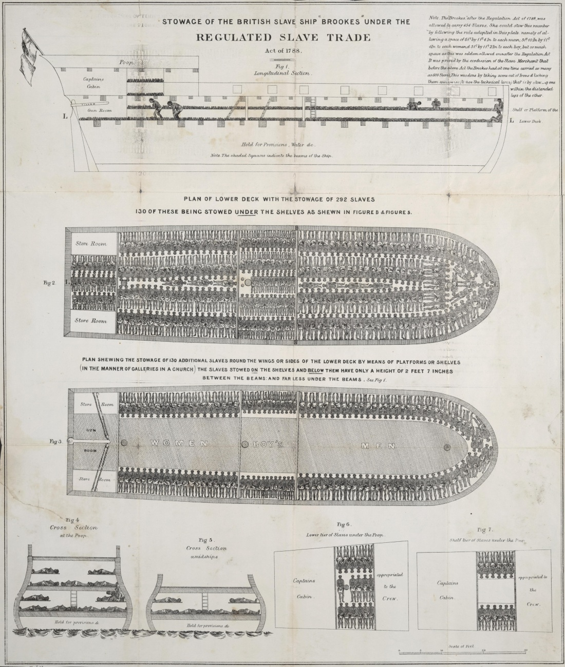 Brookes slave ship plan, 1788.