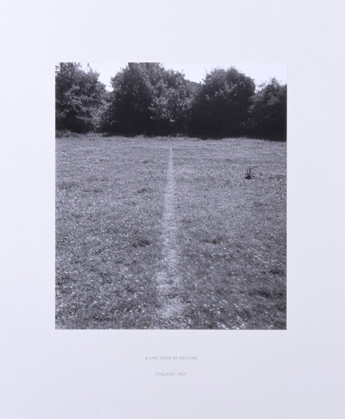 Richard Long, A Line Made By Walking, 1967.