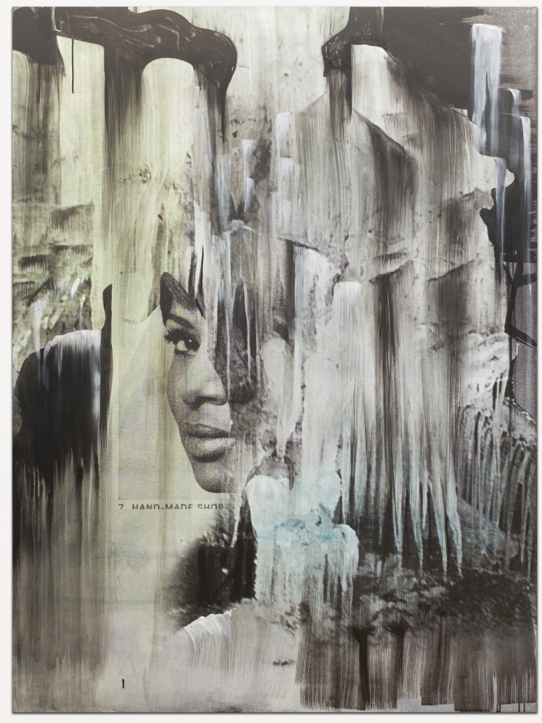 Lorna Simpson, Head on Ice #2, 2016.
