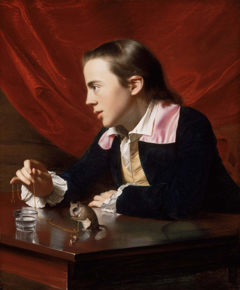 John Singleton Copley, A Boy with a Flying Squirrel (Henry Pelham), 1765.